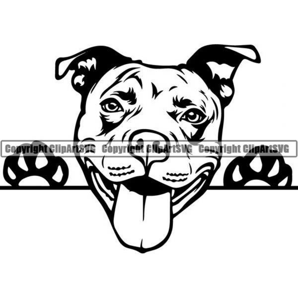 American Pit Bull SVG Clipart Vector Cricut Cut Cutting